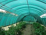 #3: Arrison Plastic (5 x 3 Meter )Agro Shade Net 75% (Green)