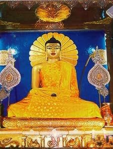 Bouddha de médecine-réimprimer le Papier sans cadre