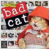Bad Cat Wall Calendar 2018