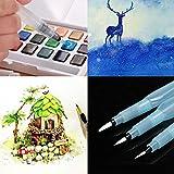 Gaddrt 3pcs Refillable Pilot Water Brush Ink penna per pittura ad acquerello disegno matita penna