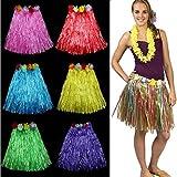 PARTY PROPZ Hawaiian hula grass skirt sm...