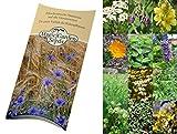 Saatgut Set: '12 traditionelle europäische Heilpflanzen', besondere Kräutersorten der Volksmedizin als Samen zur Anzucht für den Garten in schöner Geschenk-Verpackung