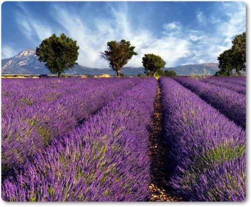 Mauspad / Mouse Pad aus Textil mit Rückseite aus Kautschuk rutschfest für alle Maustypen Motiv: Provence Frankreich Lavendelfelder | 01