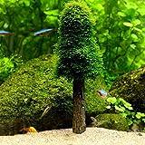 PETSOLA Aquarium Mossbaum Christmas Tree Simulation Für Tank Dekoration
