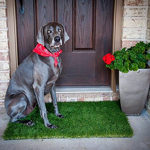 beest-alfombra-de-cesped-alfombra-verde-entrada-material-plastico-mat-04-m-a-06-m-05-m-08-m-05-m-08-