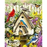 Oiseaux dans L'arrière-cour Jigsaw Puzzle 1000 Pièces