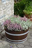 Holzfass als Pflanzkübel, Weinfass halbiert geschliffen und dunkel palisanderfarben lasiert mit silbernen Ringen (D70 cm) (mit Rollen)