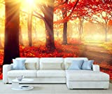 StickersWall Autumn Forest Mountain Lakeside Nature Landscape Scenery Wall Mural Photo Wallpaper Picture Self Adhesive 1027 ( 342cm(W) x 242cm(H))