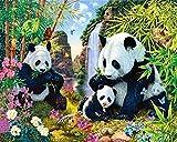 Panda Famiglia Diamond Pittura 5D DIY Full Bamboo Drill Craft Resina Ricamo Pasta Punto Croce Strumenti Kit Fiore Diamante Mosaico Adesivo Canvas Per Ufficio Decorazione Murale, Diamante Circolare, 45 * 32Cm