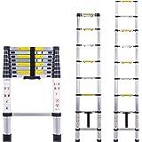 .2m B-line WORHAN/® Echelle 2.0m T/élescopique PRO Aluminium Anodis/é Solide Extensible 200cm 1K2B