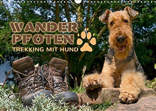 Wanderpfoten. Trekking mit Hund (Wandkalender 2019 DIN A3 quer): Wander- und Trekkingtouren mit Hund (Monatskalender, 14 Seiten ) (CALVENDO Tiere)