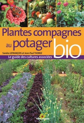 Plantes compagnes au potager bio : Le guide des cultures associes