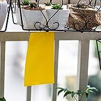 10 pcs jaune mouche piège double face, 15 * 20cm autocollants en papier collant contre les aleurodes, pucerons…