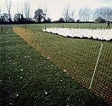 Euro-Netz Geflügel - grün - Geflügelnetz, Entenzaun, Hühnerzaun