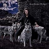 Steve Hackett: Wolflight [Ltd.Shm-CD] (Audio CD)