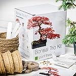 Bonsai è un'arte praticata in Asia da molti secoli. Gli alberi Bonsai sono coltivati in piccoli contenitori, potati e modellati con fili affinché restino di piccole dimensioni e assumano forme eleganti. Piantare un albero Bonsai partendo dal seme è u...
