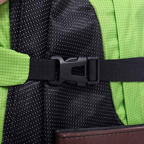 AllureFeng Outdoor-Bergsteigen Tasche 38L Sport Männer und Frauen Wanderrucksack Purple