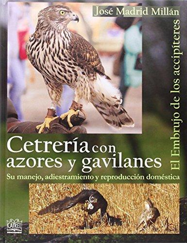 Cetrería con azores y gavilanes: El embrujo de los accipíteres por José Madrid Millán