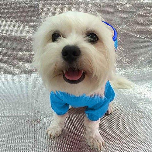 Hunde Kleidung Hundebekleidung Retor Style Grau Blau S M L XL