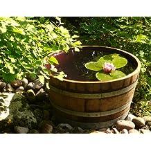 Original barril como estanque, macetero o tonel de lluvia - Diámetro cerca 70cm !