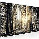 Bilder Wald Landschaft Wandbild 200 x 80 cm Vlies - Leinwand Bild XXL Format Wandbilder Wohnzimmer Wohnung Deko Kunstdrucke Braun 5 Teilig -100% MADE IN GERMANY - Fertig zum Aufhängen 503855a