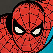 Marvel Comics Spider-Man close-up lienzo impresiones, multicolor 40x 40cm