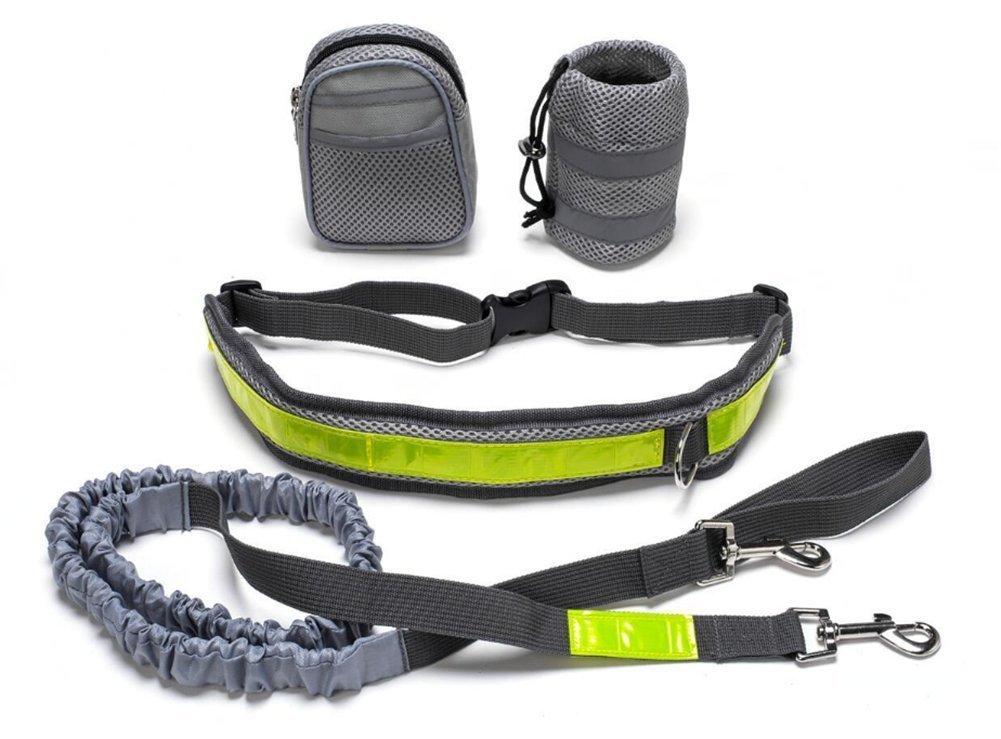 Correa elástica para correr o caminar con el perro, con cinturón ajustable para tener las manos libres y bolsa