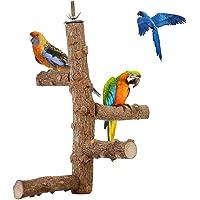 Bâton à Oiseau, bâton en Bois avec écrou à Aile en métal et boulons intégrés, perchoirs interactifs pour Cage à Oiseaux…