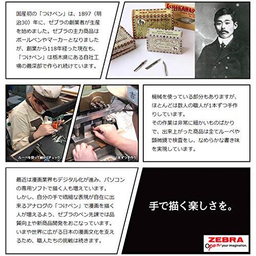 Zebra Comic G Modell Chrom, Feder, 10Schreibfedern (1Pack) (pg-6b-c-k) - 6