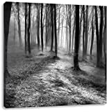 Monocrome, Düstere Landschaft schwarz weiß, Format: 70x70 auf Leinwand, XXL riesige Bilder fertig gerahmt mit Keilrahmen, Kunstdruck auf Wandbild mit Rahmen, günstiger als Gemälde oder Ölbild, kein Poster oder Plakat