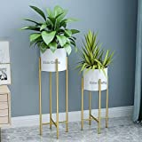 Ezzu Crafts Set of 2 Modern Plant Stand- Set with Tall Metal Stand, Decorative Standing Flower Succulent Pot Holder, Indoor Outdoor Terrace Patio Home Decor