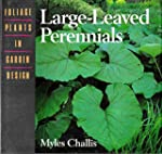 Large-Leaved Perennials