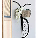 Handicraft Studio SH Studio Wrought Iron Cycle Wall Hanging for Books, Decorative Flowers & Daily Items - Black