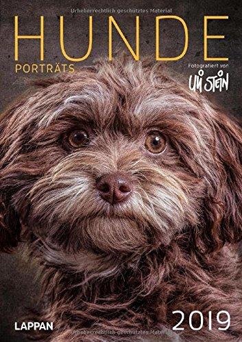 Uli Stein Hunde Portraits 2019