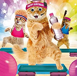 Birthday Card Quot Happy Birthday Quot Funny Animals Gym Cats