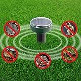 Ultrasonic Pest Repeller Répulsif de Taupe répulsif Solaire alimenté par énergie...