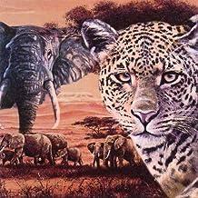 4 lose Servietten Afrika Löwe