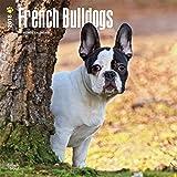 French Bulldogs - Französische Bulldoggen 2018 - 18-Monatskalender mit freier DogDays-App: Original BrownTrout-Kalender [Mehrsprachig] [Kalender]...