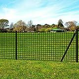 Festnight Clôture Ensemble de clôture en Style européen 10 x 1,7 m Acier Gris