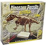 Dig Out Dinosaur Skeleton Fossil Paleontology Archaeology Excavation Kit For Kids ~ T Rex