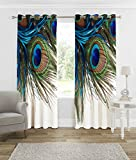 #5: B7 CREATIONS Digital Printed Peacock Feathers Knitting Eyelet Long Door Curtain 1 Piece - (46x106 Inch / 4x9 Feet Approx), White
