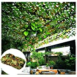 Tarnnetz für Garten, Grünes 2x3m 5x3m Tarnung Netz Verstärkung Schattierungsnetz Sonnenschutznetz Markisen Zelt Cover für Army Shade Militär Armee Jagd Schießstand Camping Outdoor Hide Car Decoration