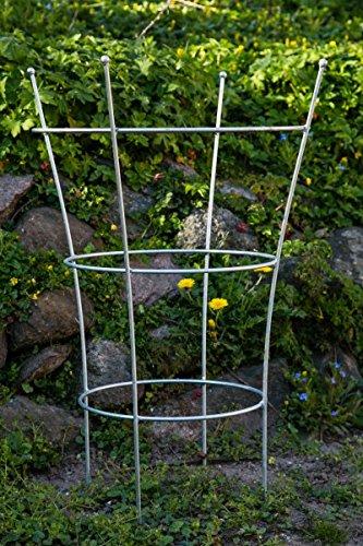 KUHEIGA Stabiler Staudenhalter Verzinkt H: 80cm, Volleisen Strauchhalter, Rankgerüst,