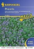 Gründünger-Saaten Phacelia, 1 kg Phacelia tanacetifolia immagine