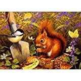 DIY 5D Diamond Painting, Crystal Rhinestone Embroidery Pictures Arts Craft for Home Wall Decor Squirrel and Birdie 11.8 x 15.7