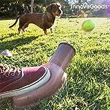 2317 Hundebälle Playdog InnovaGoods