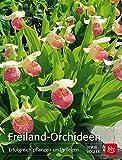 Freiland-Orchideen: Erfolgreich pflanzen und pflegen