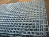 Galvanised Weld Mesh Panel 2440x1220x50x50x2.5mm - Free Delivery