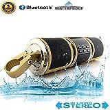 BACKWORLD Bluetooth Lautsprecher Motorrad Fahrrad MP3-Player Audio Motorrad Roller FM Radio Alarmanlage USB AUX-Eingang Wasserdicht,Gold