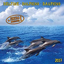 Dolphins 2017: Kalender 2017 (Artwork Edition)